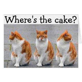 Tarjeta del feliz cumpleaños con el gato triple