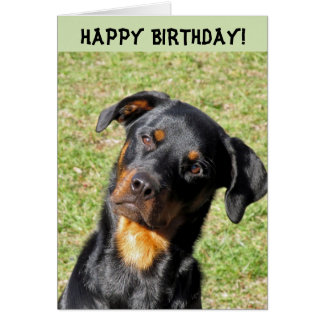 Tarjeta del feliz cumpleaños de Heidi