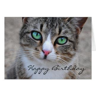 Tarjeta del feliz cumpleaños del gato de Tabby