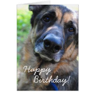 Tarjeta del feliz cumpleaños del perro de pastor a