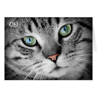 """Tarjeta del feliz cumpleaños: ¡El gato dice """"oh! """""""