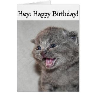 Tarjeta del feliz cumpleaños: Gatito gris