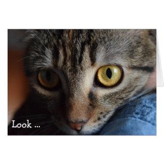 Tarjeta del feliz cumpleaños: La cara del gato