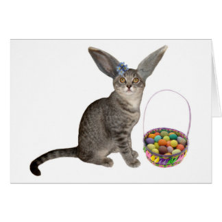 Tarjeta del gatito de Pascua