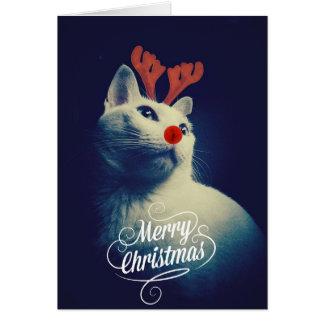 Tarjetas de Navidad de gatos