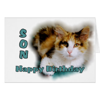 Tarjeta del gato de calicó del feliz cumpleaños