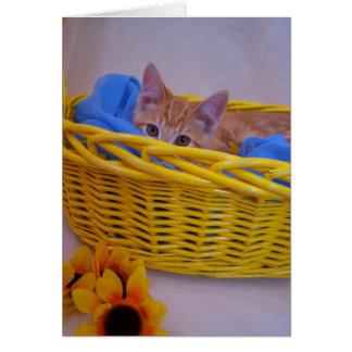 tarjeta del gato de la cesta