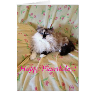 Tarjeta del gato del cumpleaños