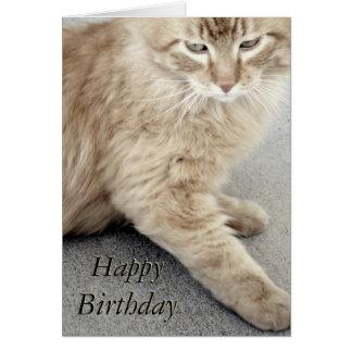 Tarjeta del gato del feliz cumpleaños