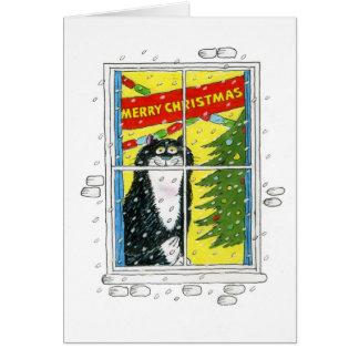 Tarjeta del gato del navidad - ventana