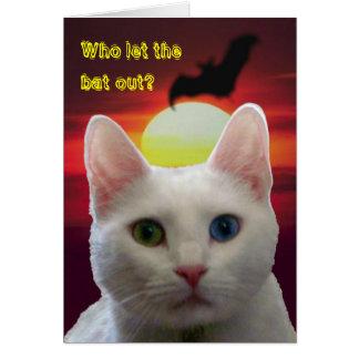 Tarjeta del gato y del palo de la serenidad --