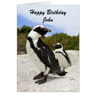 Tarjeta del humor de los pingüinos del feliz cumpl