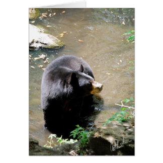 Tarjeta del oso