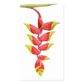 Tarjeta del perfil de la rama de Heliconia Plantilla De Tarjeta Personal