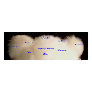 Tarjeta del perfil del profesor I de los osos de Tarjetas De Visita Mini