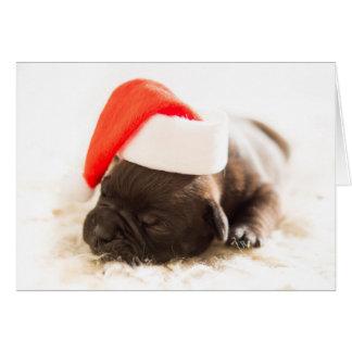 Tarjeta del perrito del dogo del navidad - ESCONDA