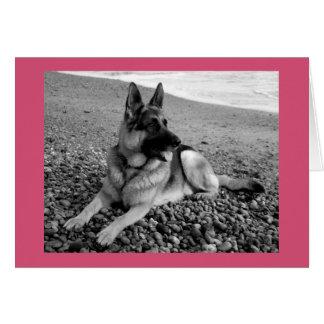 Tarjeta del perro de perrito del pastor alemán del