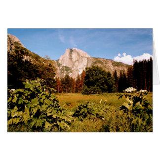 Tarjeta del prado del parque nacional de Yosemite