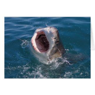 Tarjeta del tiburón
