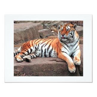 Tarjeta del tigre invitación 10,8 x 13,9 cm