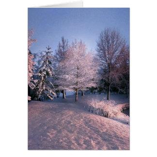Tarjeta Deseándole la paz esta navidad (tarjeta)
