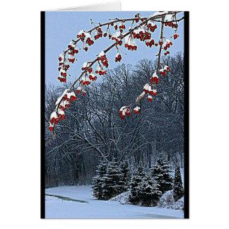 Tarjeta ¡Deseándole una estación hermosa del navidad!