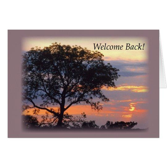 Tarjeta Detrás puesta del sol agradable del árbol 3748
