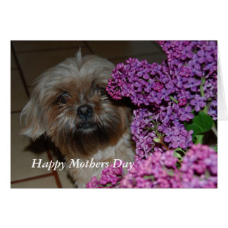 Tarjeta Día de madres feliz de Tessi