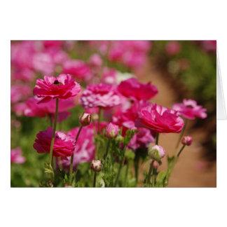 Tarjeta Diseño rosado de Ranunculas por el laurel