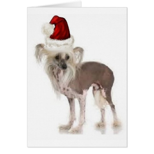 Tarjeta Dogs~Original Ditzy Notecard~Chinese Crested