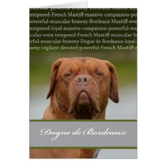 Tarjeta Dogue de Bordeaux, descripción de la raza del