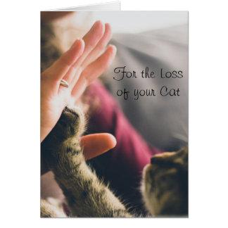 Tarjeta Donante de la pata del gato Alto-cinco