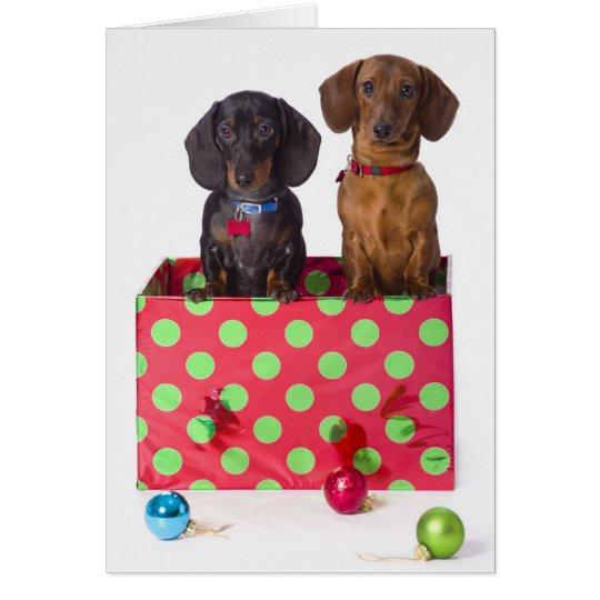 Tarjeta Dos perritos del Dachshund