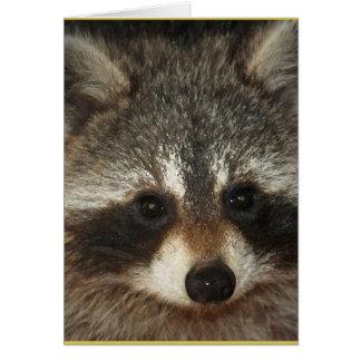 Tarjeta Duendecillo; un mapache notable por completo de