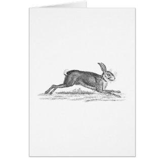Tarjeta Ejemplo de los 1800s del conejo de conejito de las