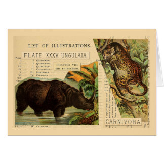 Tarjeta Ejemplos del animal de Jaguar del rinoceronte