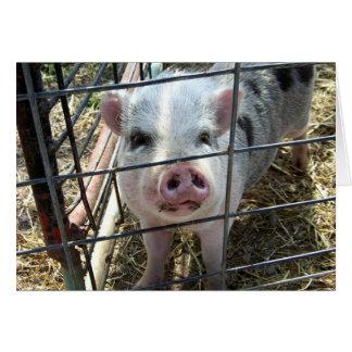 Tarjeta El cerdo dulce que piensa en usted carda