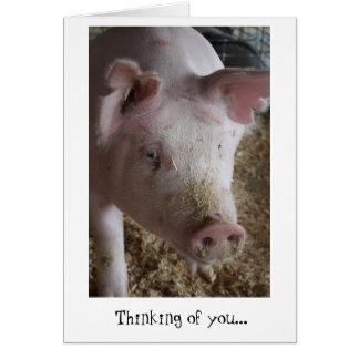 Tarjeta El cerdo que piensa en usted carda