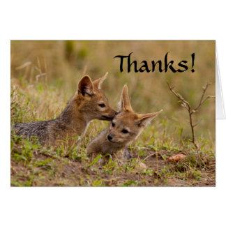 Tarjeta El chacal Cub le agradece