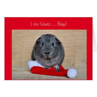 Tarjeta El conejillo de Indias divertido del navidad comió