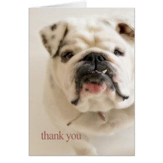 Tarjeta El dogo blanco leal le agradece