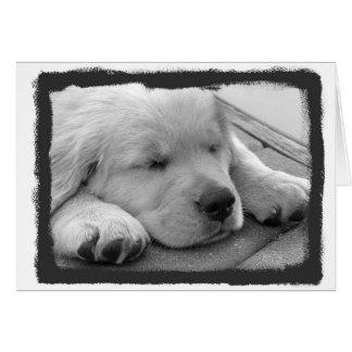Tarjeta El dormir de oro del perrito
