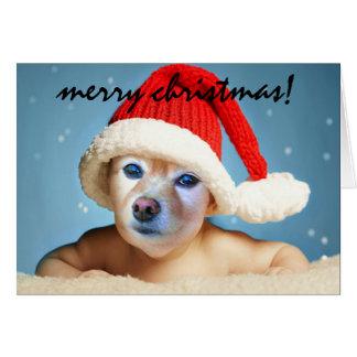 Tarjeta El Fox es un bebé en un gorra #1 de Santa