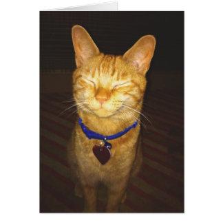Tarjeta El gatito hace un cumpleaños del deseo