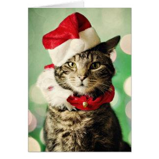 Tarjeta El llevar del gato de Tabby navidad gorra y cuello