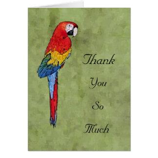 Tarjeta El Macaw del escarlata le agradece Notecard