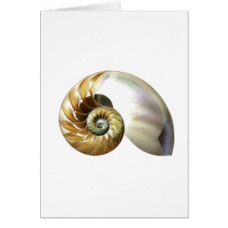 Tarjeta El nautilus Shell