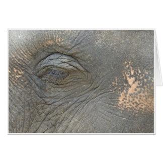 Tarjeta El ojo del elefante