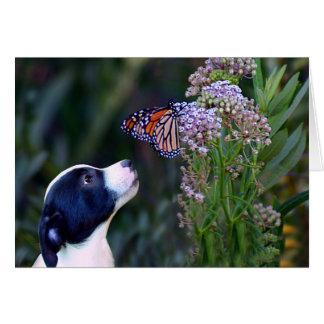 Tarjeta El perrito y la mariposa lindos le agradecen