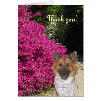 Tarjeta El perro lindo le agradece cardar